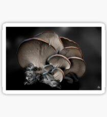 Painted Fungus Sticker