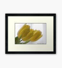 ❤❤❤ Frasi Belle Sulla Vita . Mellow yellow. Be sure to wear flowers in your hair! Featured in Tulips. Framed Print