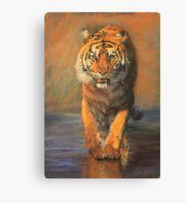 Tiger (Beach Vacation) Canvas Print
