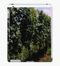 Summer Vineyard iPad Case/Skin