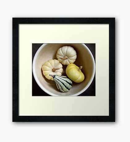 Three Little Pumpkins and a Gourd Framed Print