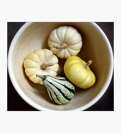 Three Little Pumpkins and a Gourd Photographic Print