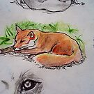 Mrs Fox takes a well earned rest! by debzandbex
