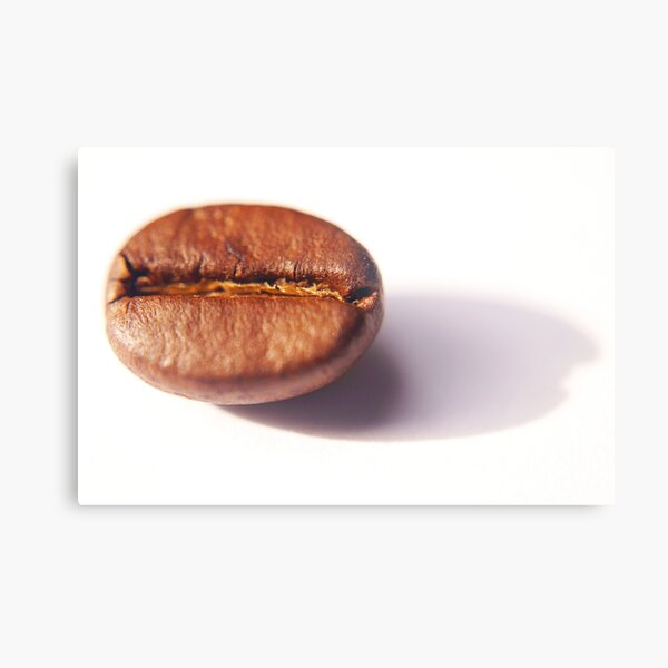 coffee bean close up Metal Print