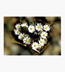 Heart of Nature Photographic Print