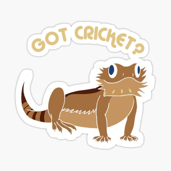 bearded dragon herps reptile pets lizard funny got cricket Sticker