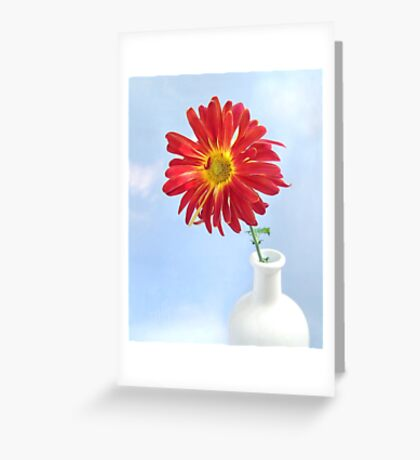 Gerbera Daisy in a White Vase Greeting Card