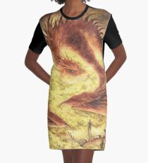 Sleeping Smaug Graphic T-Shirt Dress