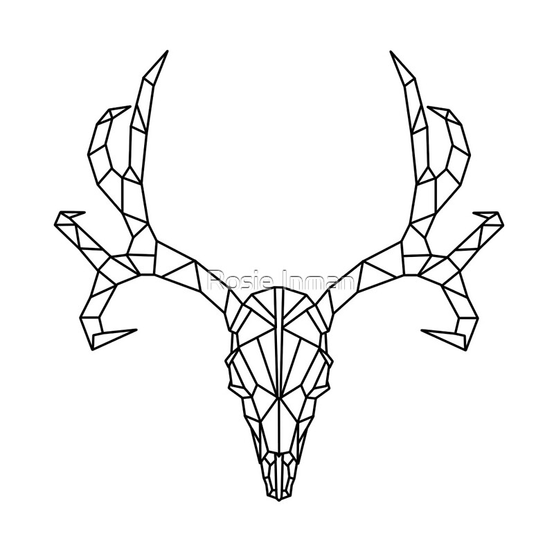 Quot Geometric Deer Skull Outline Quot By Rosie Inman Redbubble