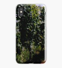 Summer Vineyard iPhone Case