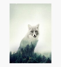 Woodland Animal Fox Double Exposure Photographic Print