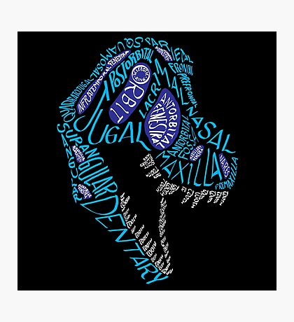 Color Calligram Tyrannosaur Skull Photographic Print