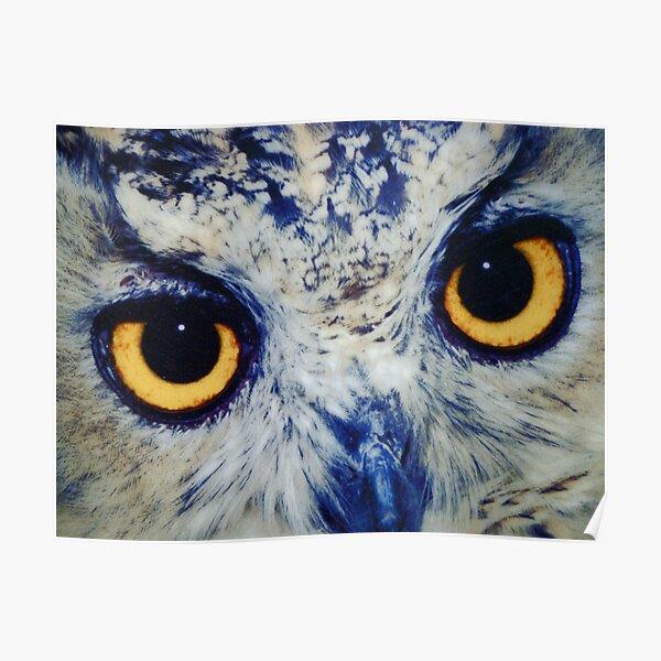 Denver Owl Gifts Merchandise Redbubble