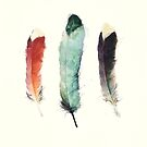 Feathers von Amy Hamilton