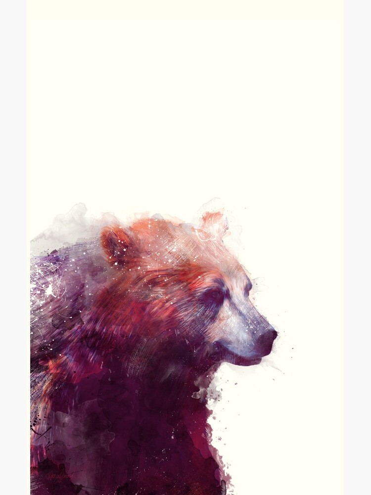 Bear // Calm by AmyHamilton
