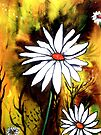 Daisy Delight by Linda Callaghan