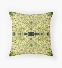 Proteaceae, Leucadendron sessile no 3 Throw Pillow