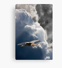 Storm Running Metal Print
