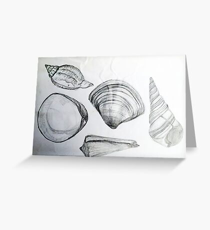 Sea Shells 4 by Margo Humphries Greeting Card