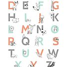 Animal Alphabet by Amy Hamilton