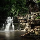 Bowlees River Waterfall by timmburgess