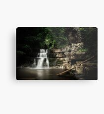 Bowlees River Waterfall Metal Print