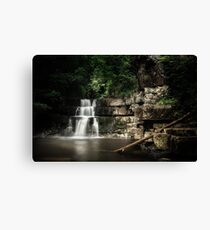 Bowlees River Waterfall Canvas Print