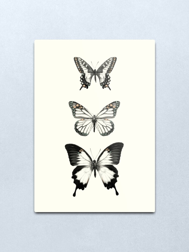 Alternate view of Butterflies // Align Metal Print