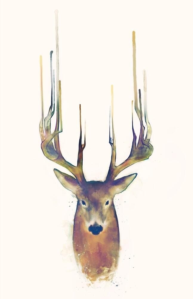 Deer // Steadfast by Amy Hamilton