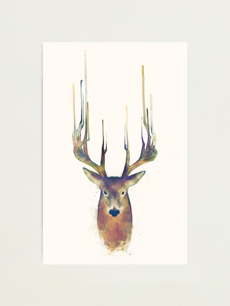 Alternate view of Deer // Steadfast Photographic Print