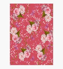 Floral Blossoms Photographic Print
