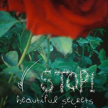 STOP! Beautiful secrets inside ~ by Aviadora