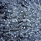 Frozen footsteps by Bluesrose