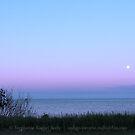 Evening Walk At Fundy by Stephanie Rachel Seely
