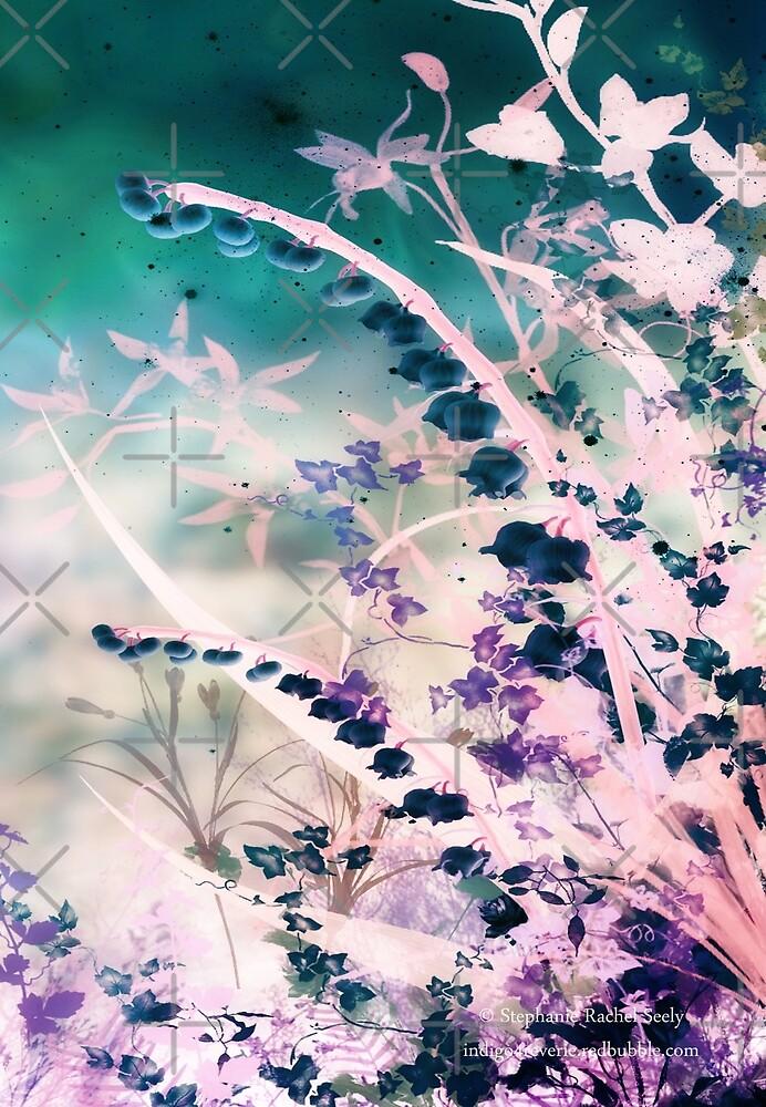 Dulcet  by Stephanie Rachel Seely
