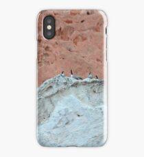 The Wierdest Roost iPhone Case