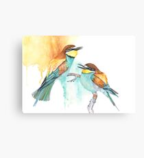 Bee Eaters Canvas Print
