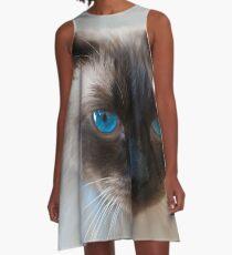 0807 Old Blue Eyes A-Line Dress