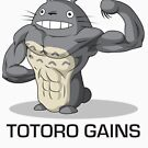 Totoro Gains by McBethAllen
