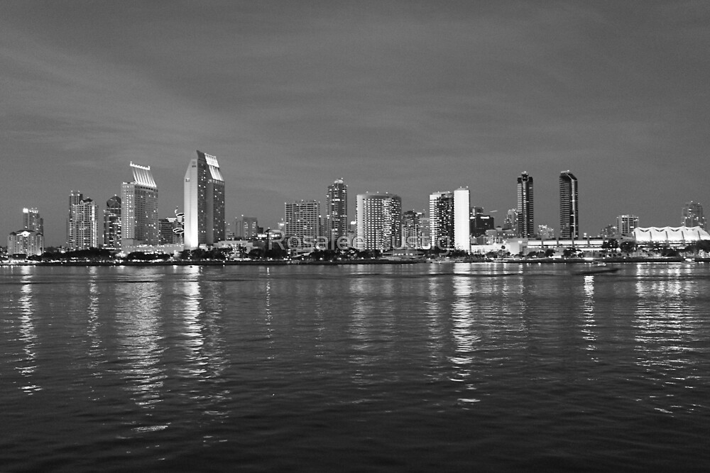 San Diego Night Skyline by Rosalee Lustig