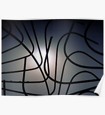 Curvilinear Cagework Poster