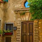 Home in Volterra by Barbara  Brown