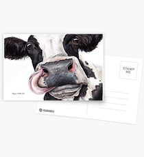 Dairy Cow Postcards