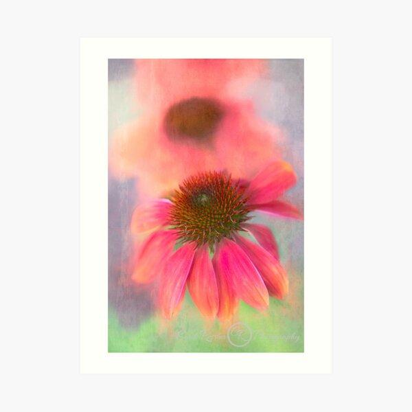 Painterly Coneflower Art Print