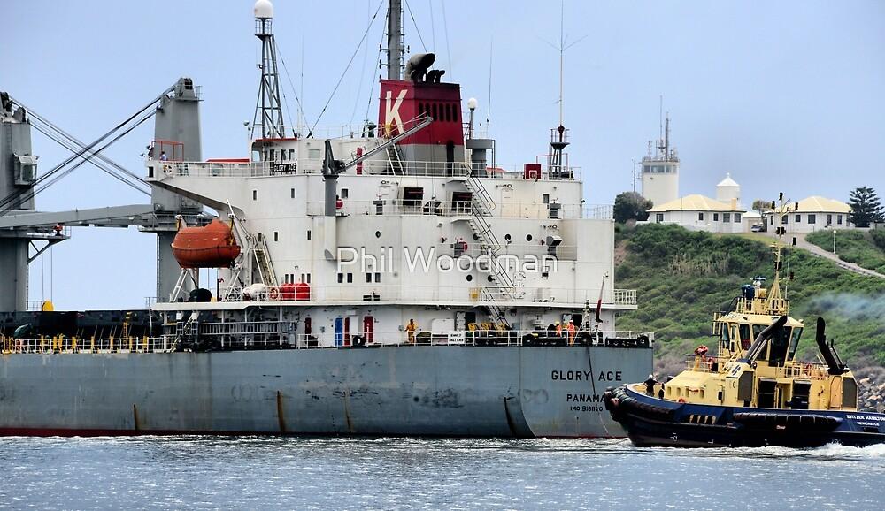 Glory Ace - Newcastle Harbour NSW Australia by Phil Woodman