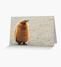 That Monday Feeling Greeting Card