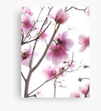 Essence of Spring Canvas Print