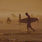 Beach Symphony  by Harvey Schiller