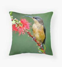 Eastern Spinebill  Throw Pillow