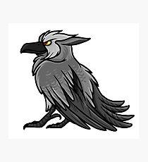 Druid Cuties - Worgen Raven Photographic Print